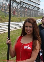 grid-girls-28
