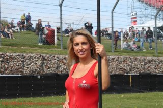 grid-girls-36